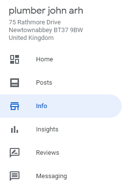 screenshot of Google My Business Info Button on the Main Menu
